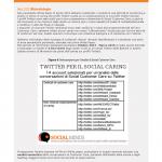 Anteprima del 2° White Paper 2015